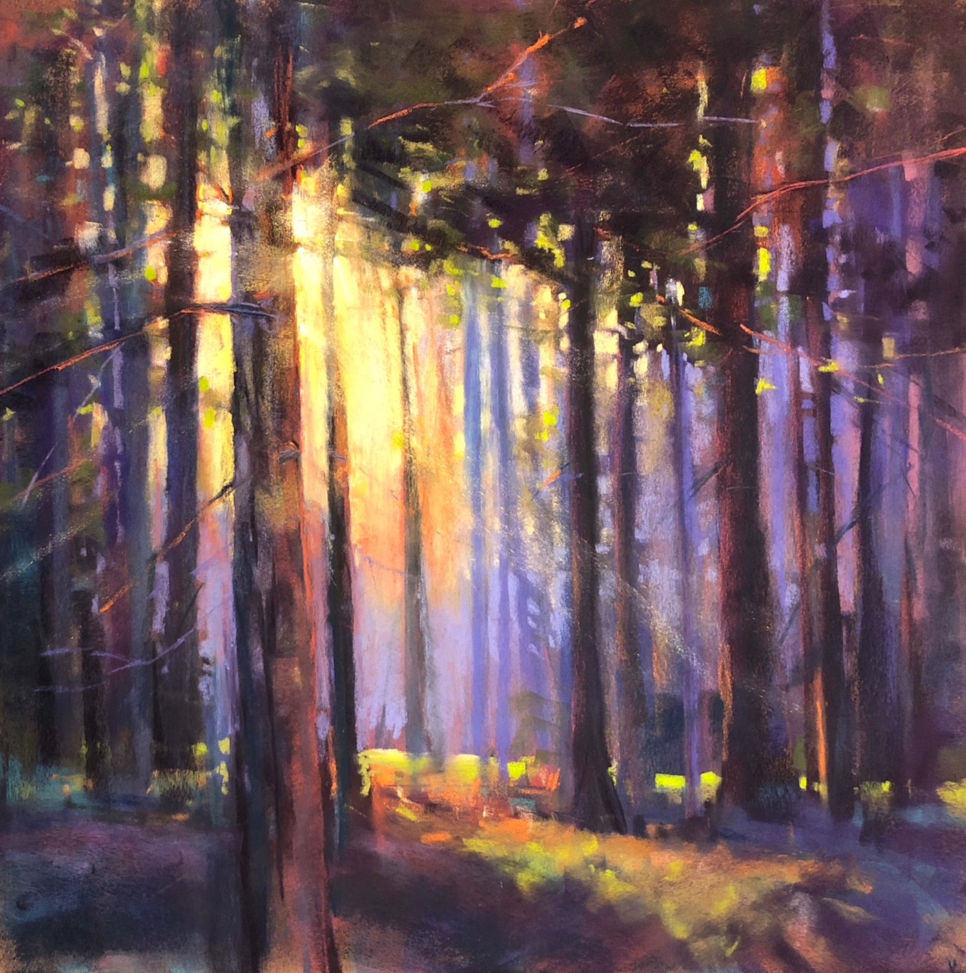 A Houston_Wooded Symphony_18x18 pastel_1300.jpeg