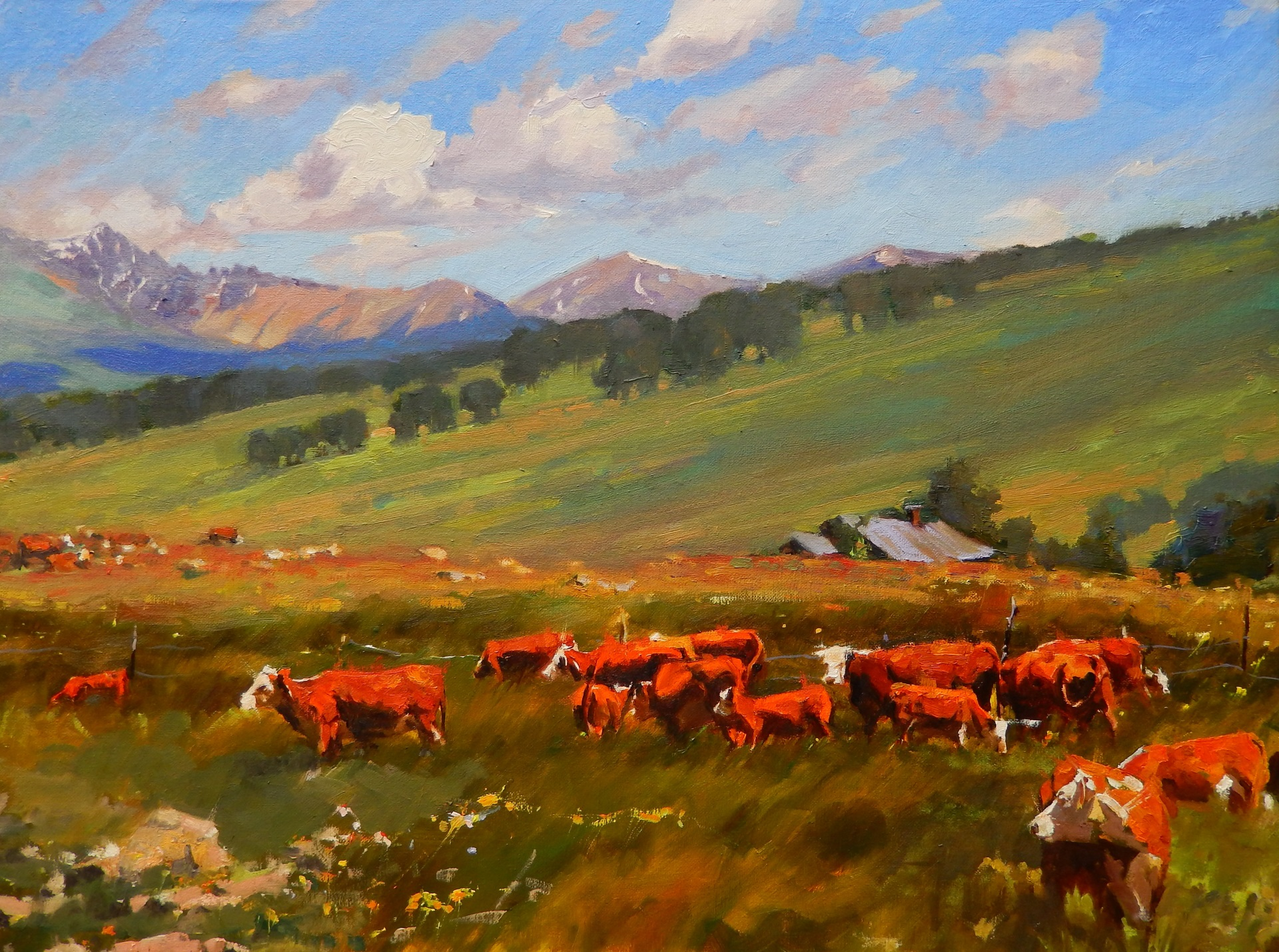 RobinWeiss_Colorado Ranchland_18x24_oil_1400.jpg