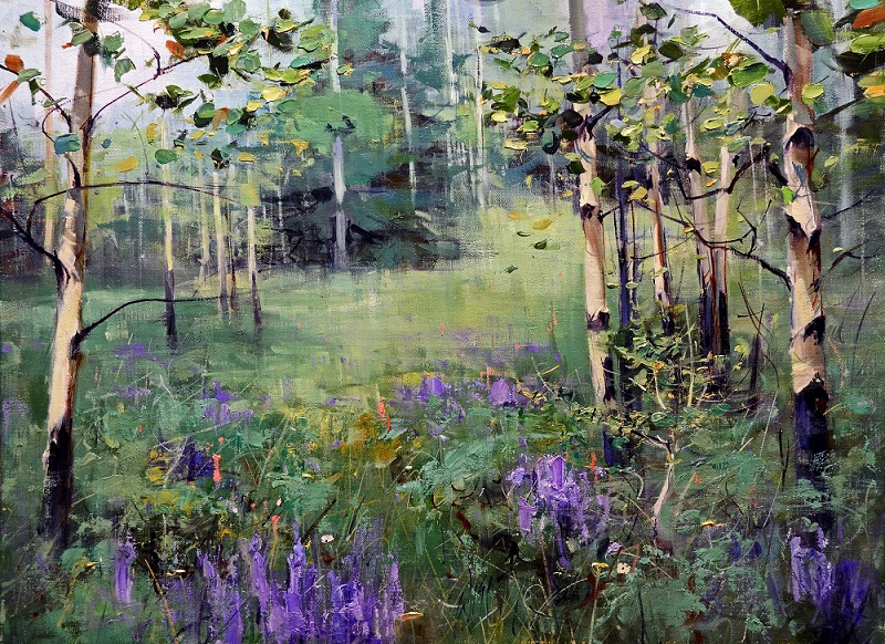 Aspen Woods with Lupine