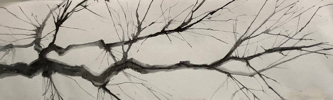 Cherry Blossoms- Sumi ink with brush and straw blowing.jpeg