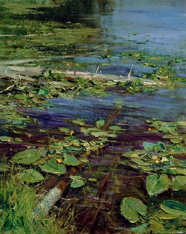 Mike Wise Lily pads.jpg
