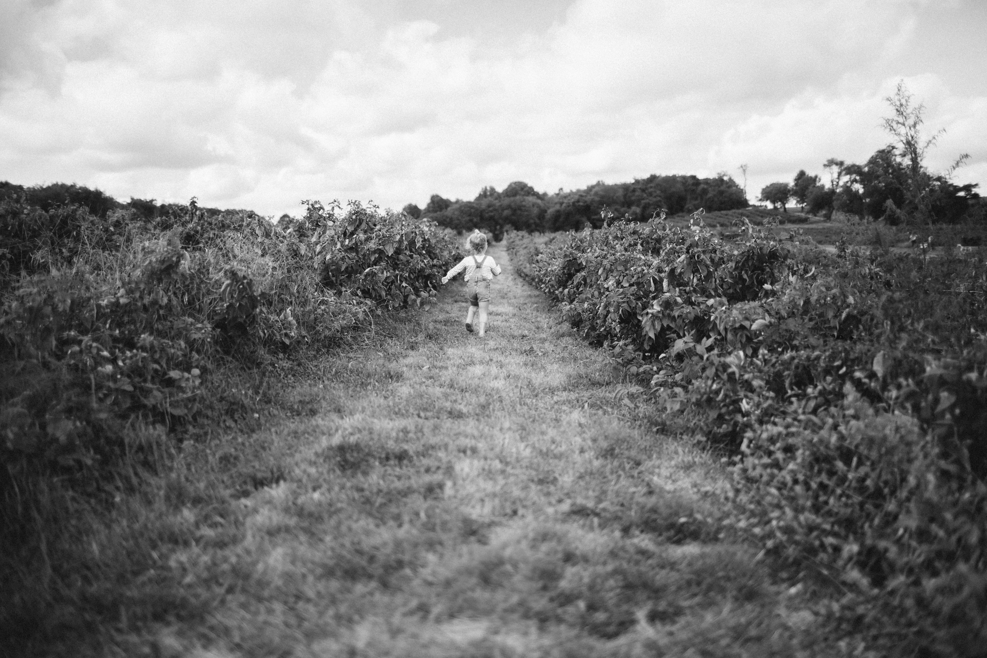 Apple Picking 2013 FB-6.jpg