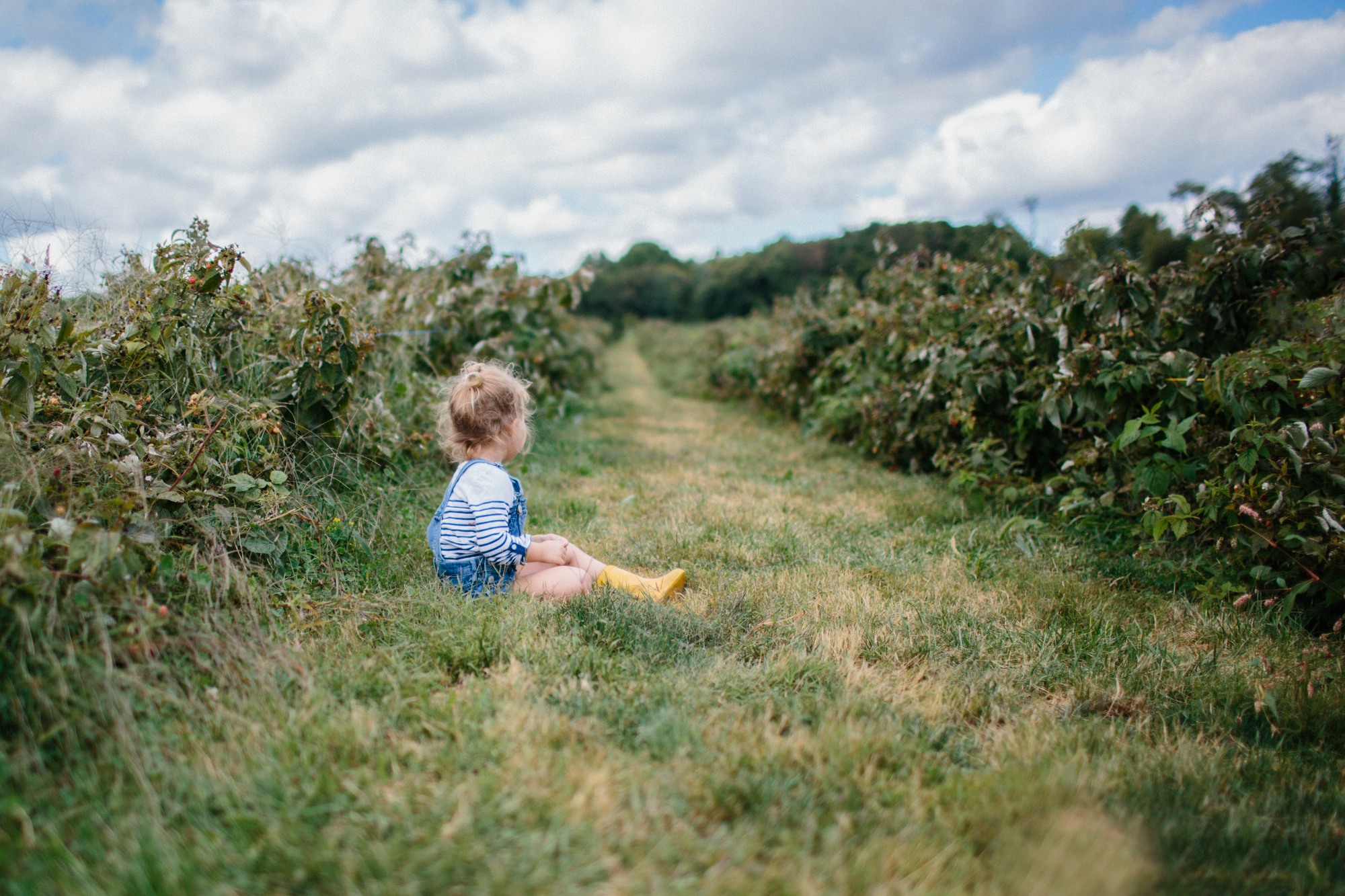 Apple Picking 2013 FB-9.jpg