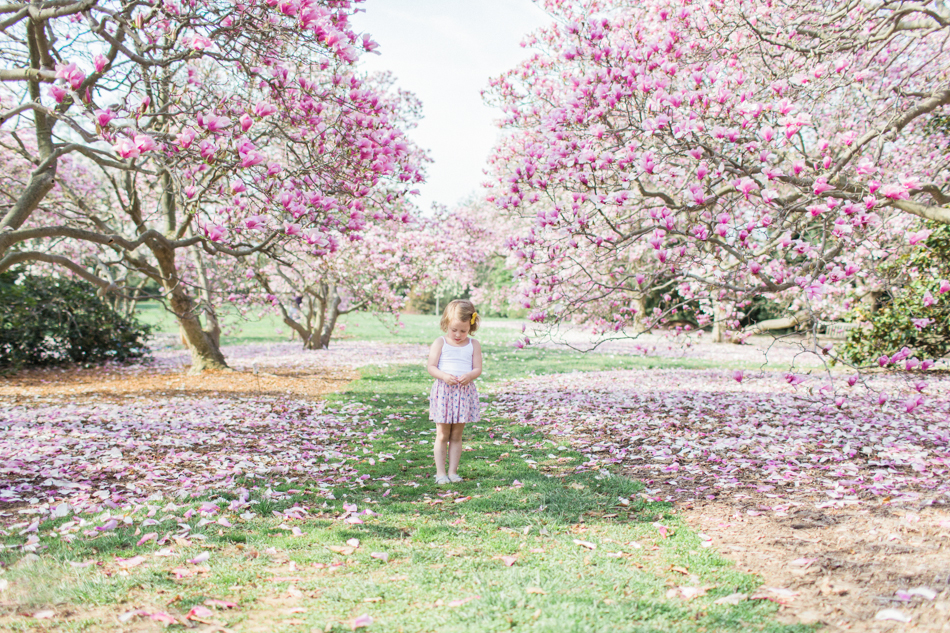 Arboretum April 2014 Blog-5.jpg
