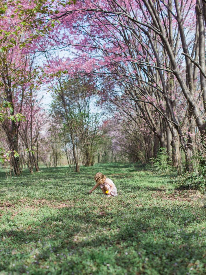 Arboretum April 2014 Blog-11.jpg