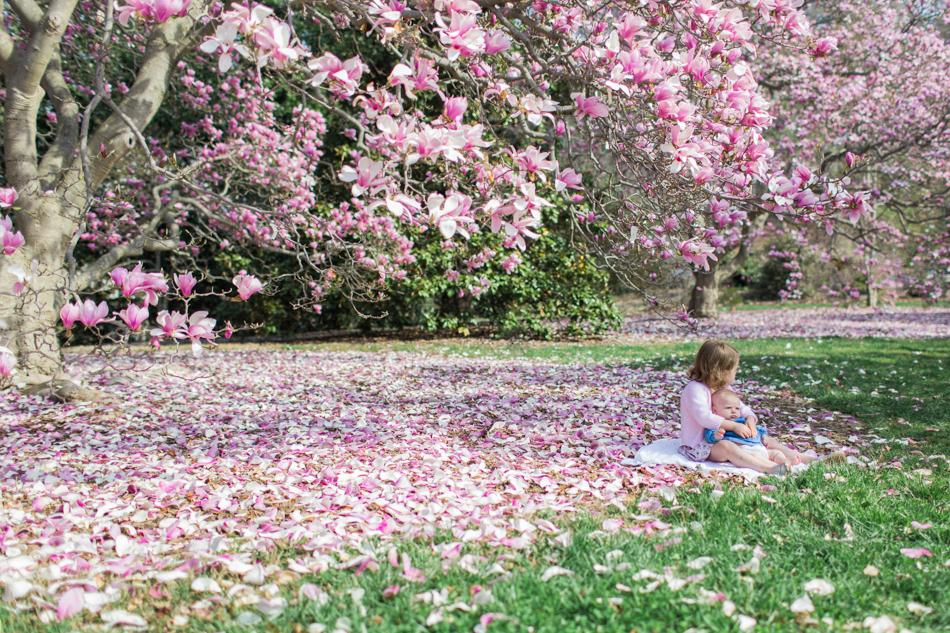 Arboretum April 2014 Blog-14.jpg