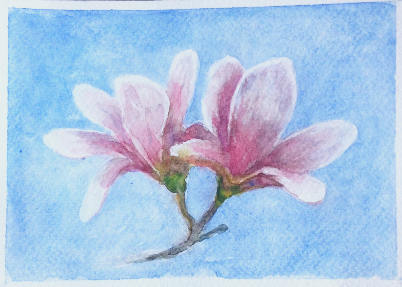 Two Flowers Blue.jpg