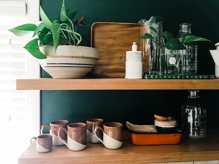 We recently interviewed Ashley Palmer & Ashley Daley  of  Retro Den , a vintage shop and plant store in Tulsa, OK.  They also have a great succulent care guide on their website.  Photo by A. Palmer.