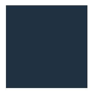 Revival Rugs.png
