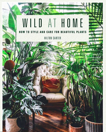 Hilton Carter on Plant Care