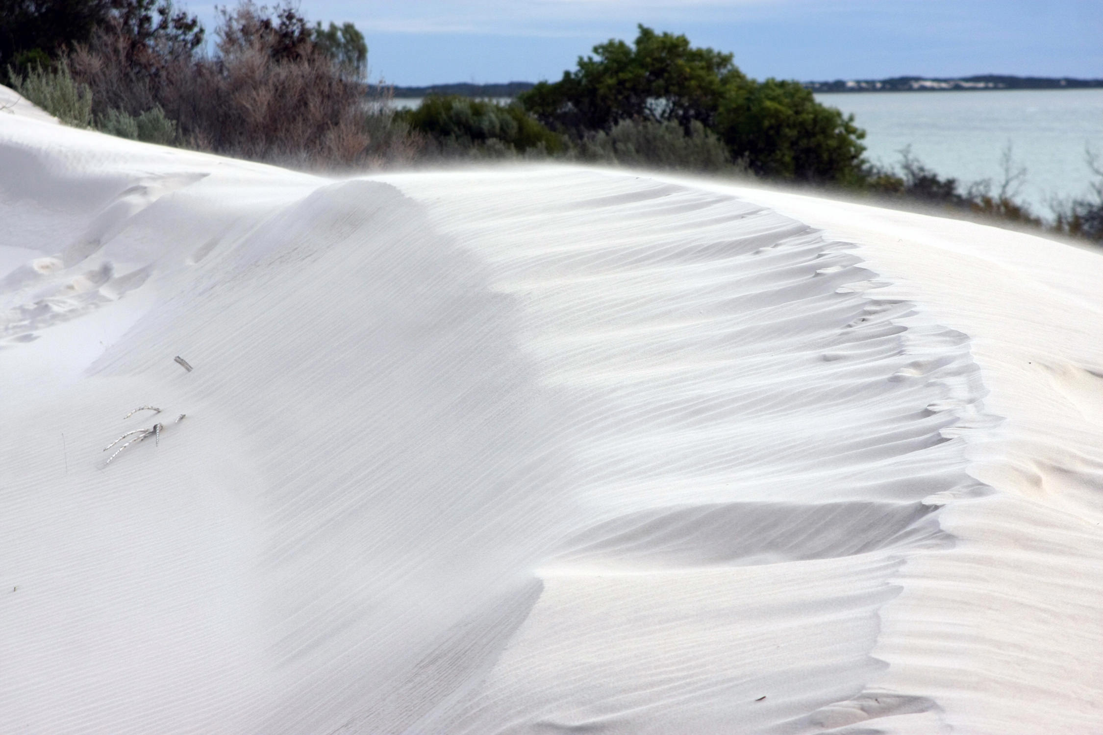 Sand dune movement caused by coastal winds