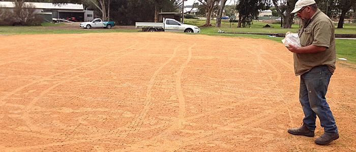 Application - hand spread fertiliser