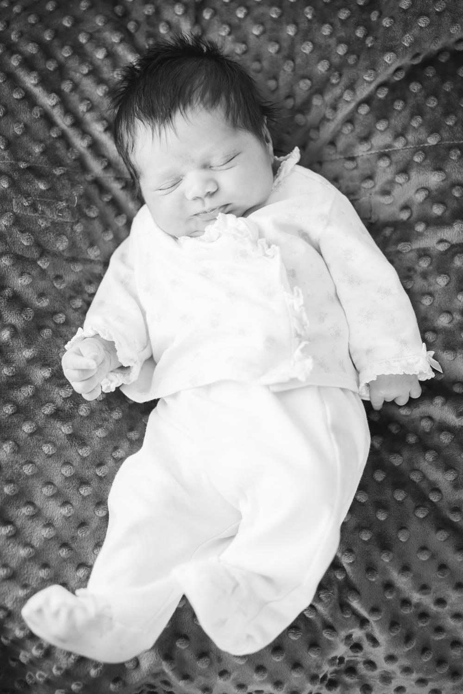 newborn-photography-1