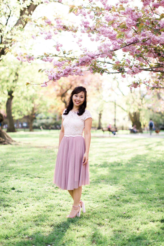 boston common gardens engagement session cherry blossoms