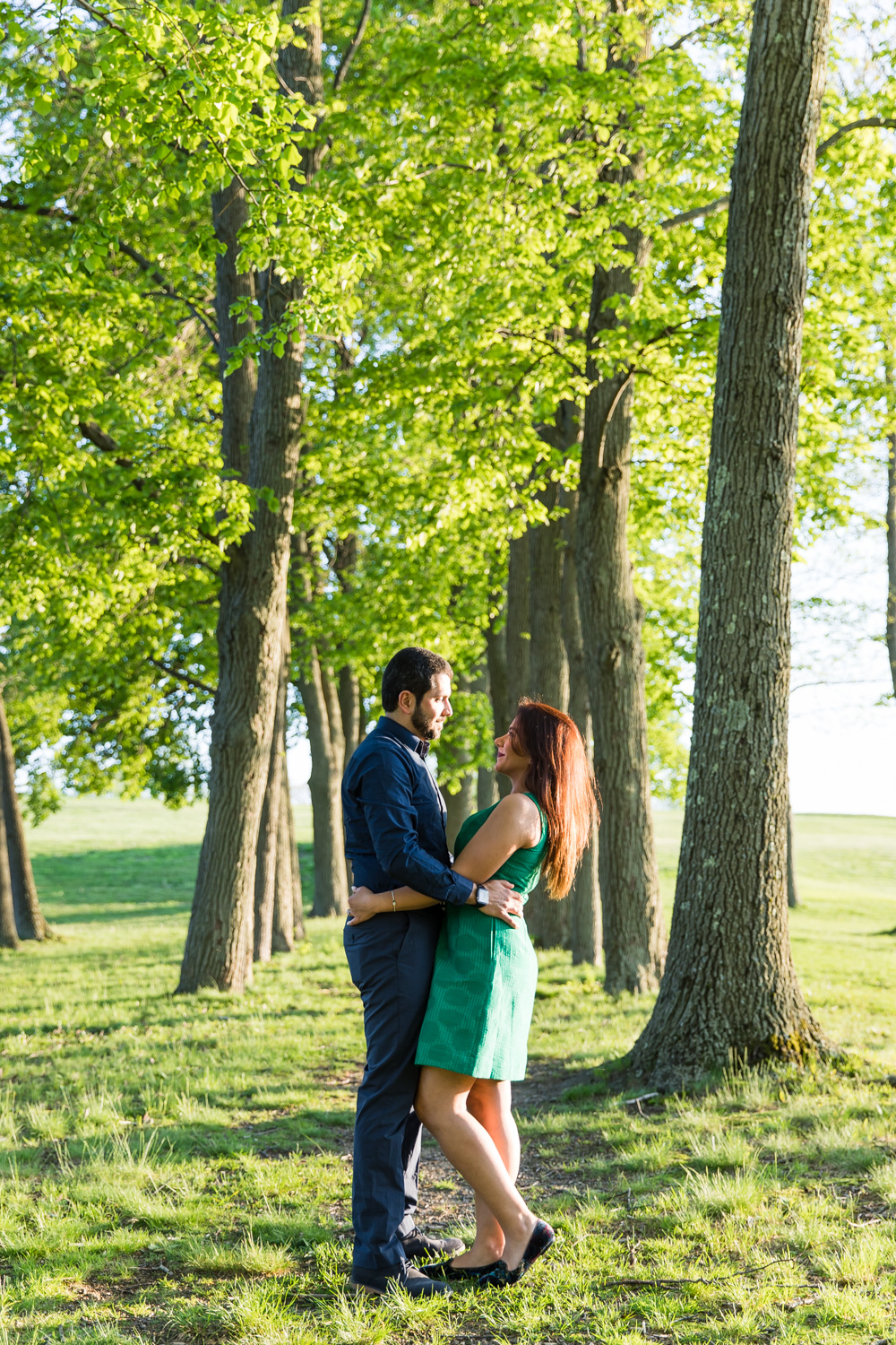 larz anderson park persian engagement session