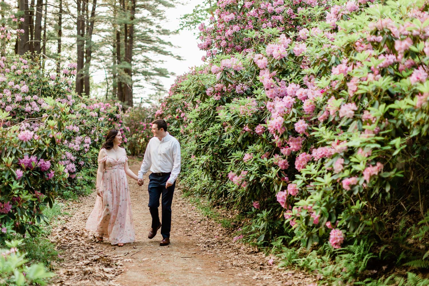 Maudslay State Park Engagement