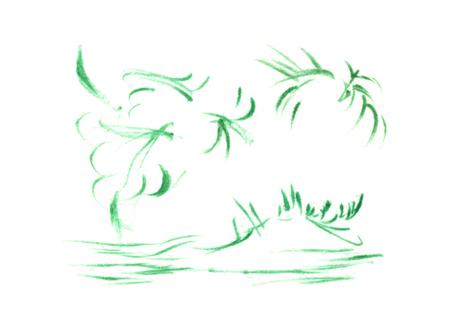 palmierfondnoir.jpg