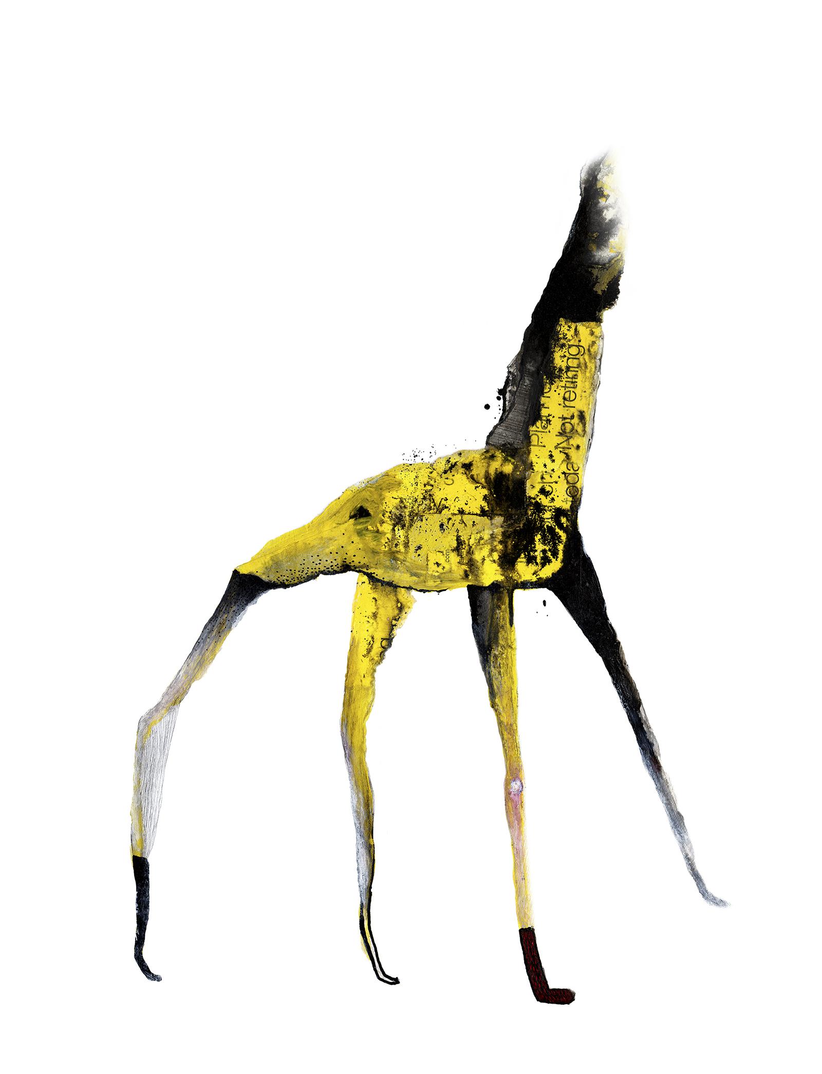kevin-tran_charles-the-giraffe.jpg