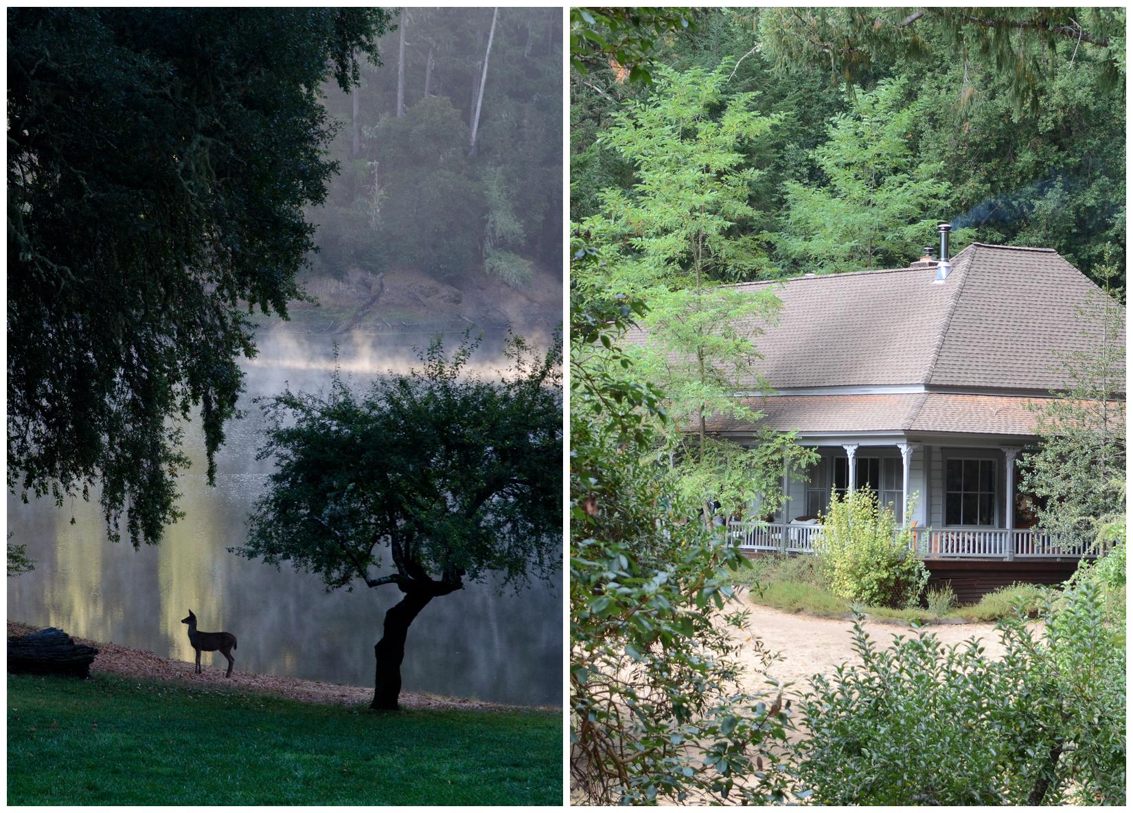 LakeLeonard_house.jpg