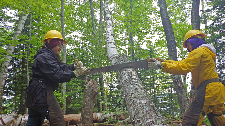 Sherling Yang (left) and Victoria Chasko cleared debris using a crosscut handsaw.