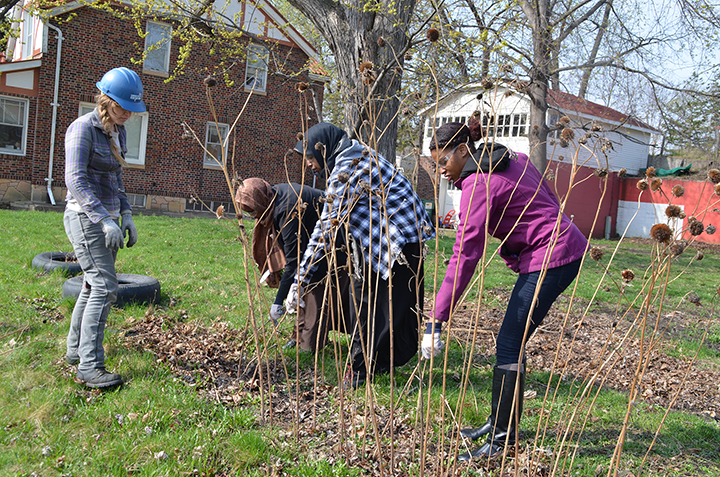 Youth Outdoors alumni cleared a Youth Farm garden of debris, in preparation for spring planting.