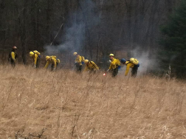 firetraining01.png