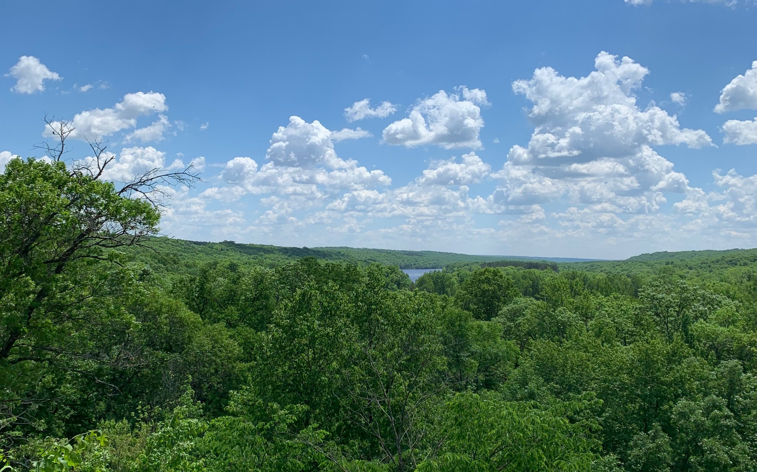 Wild River view from nature center