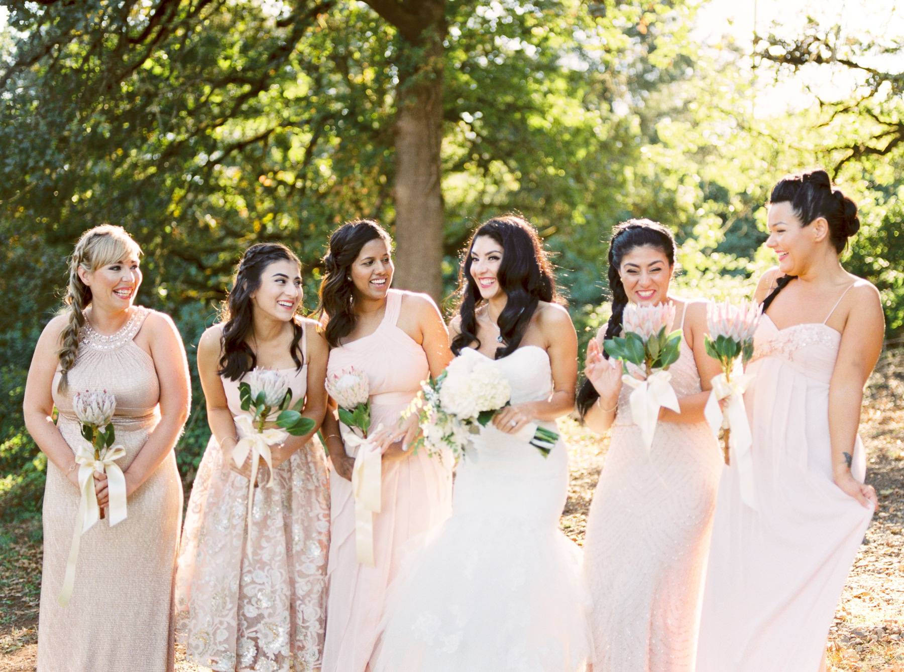 Bride and Bridesmaids in sunlight