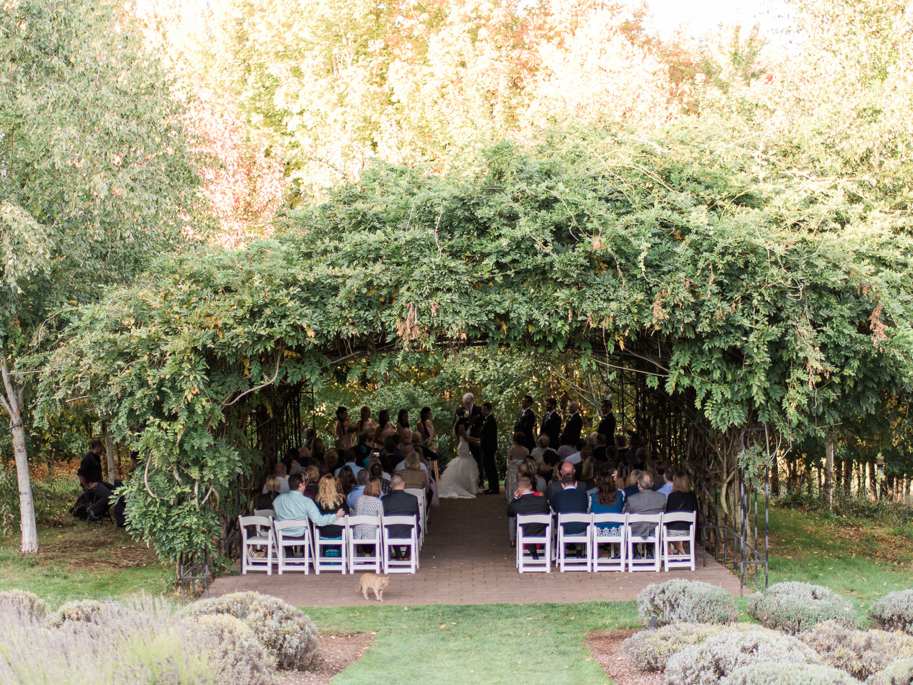 Oregon Olive Mill Wedding