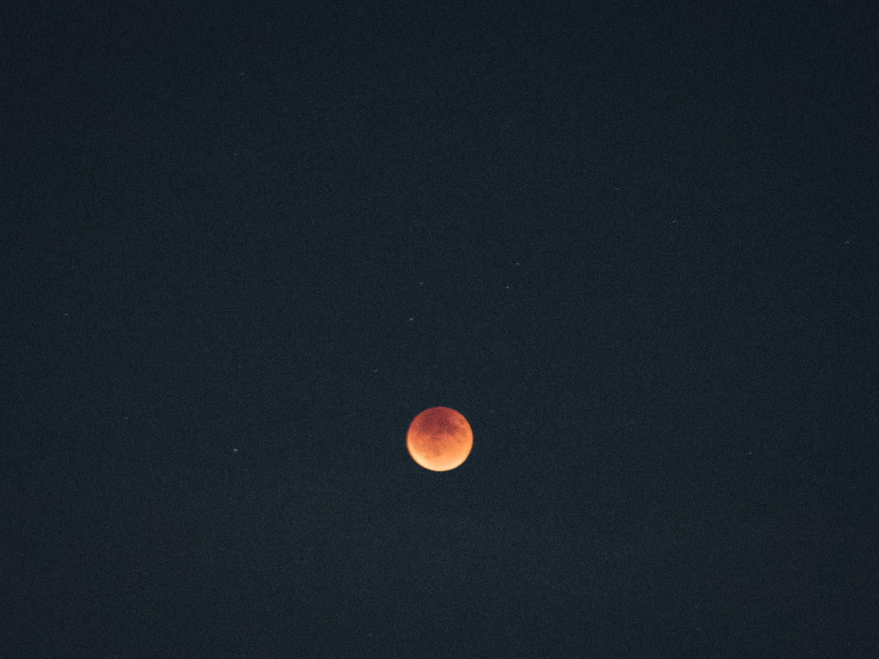 Blood Moon at Portland Wedding