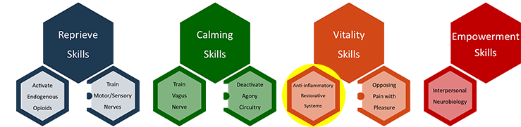 LESSON 7 ANTI-INFLAMMATORY AND RESTORATIVE SYSTEMS