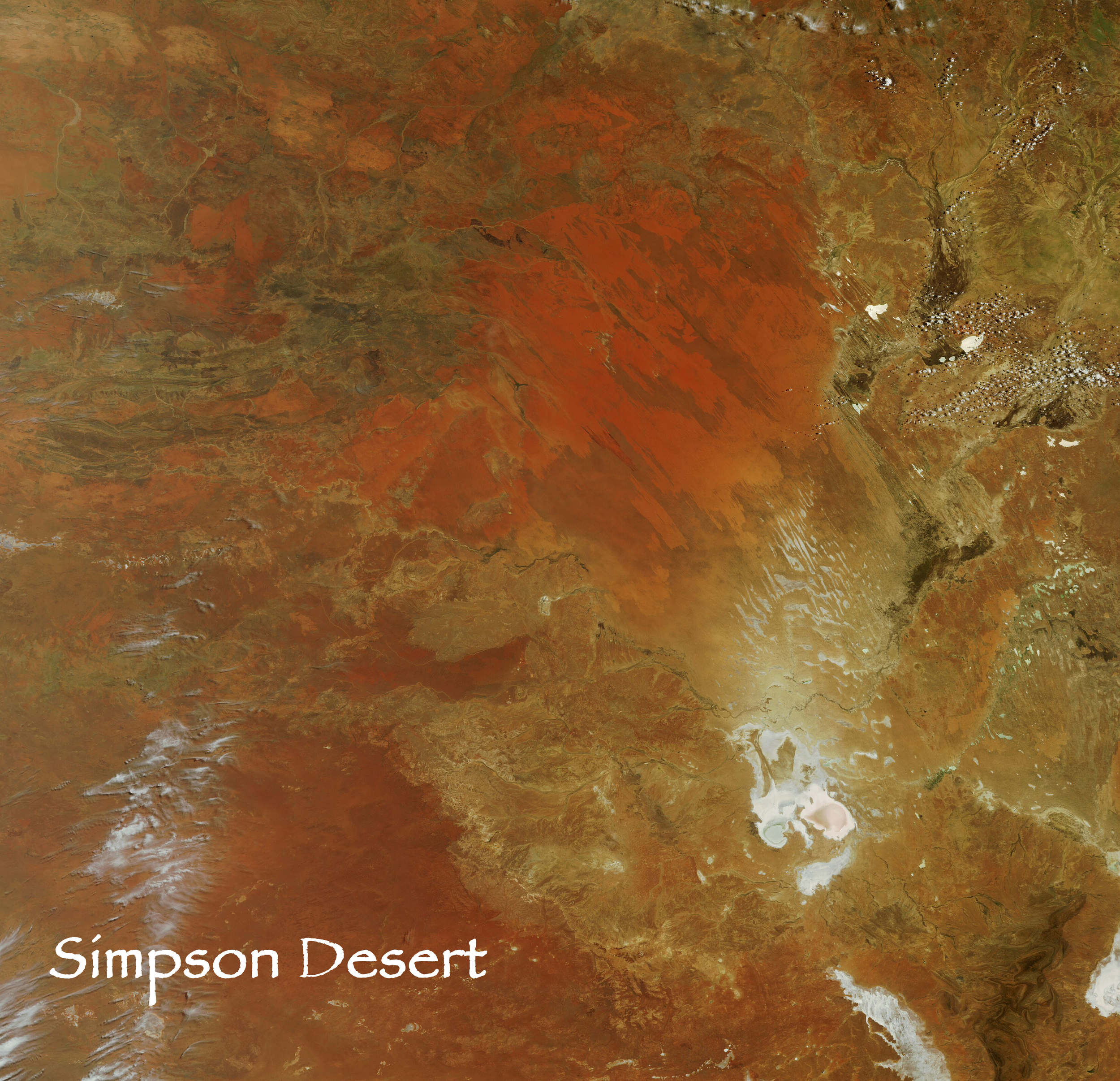 The world's largest parallel sand ridge desert. reconnxpedition travelled right across the desert in a wobbly line from west to east.  The Walkabout Expedition route was from the west of the desert to Lake Eyre in the southeast.