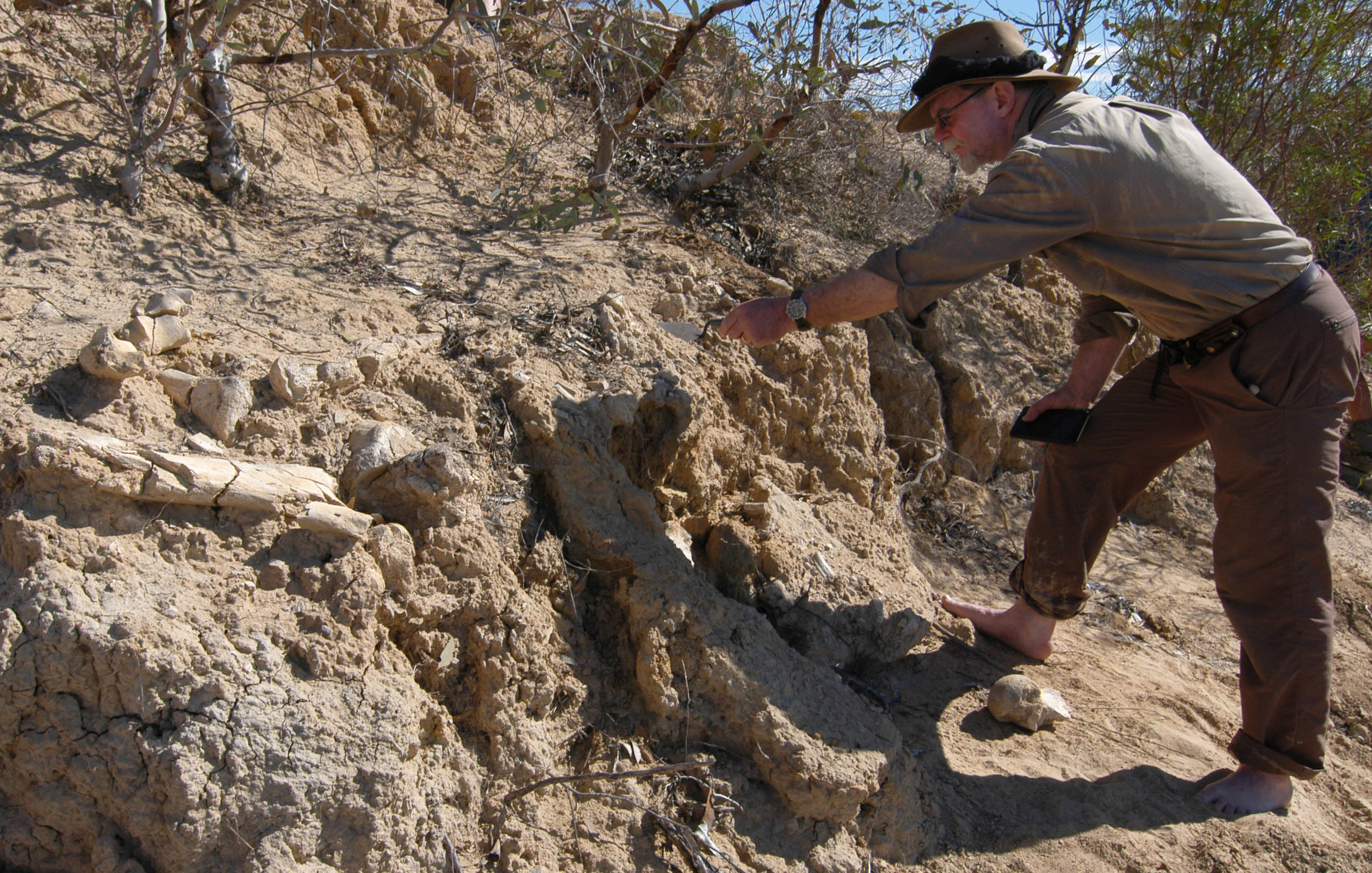 Dr Mike Smith, National Museum of Australia, examines megafauna fossil, Arid Rivers Expedition 2007.