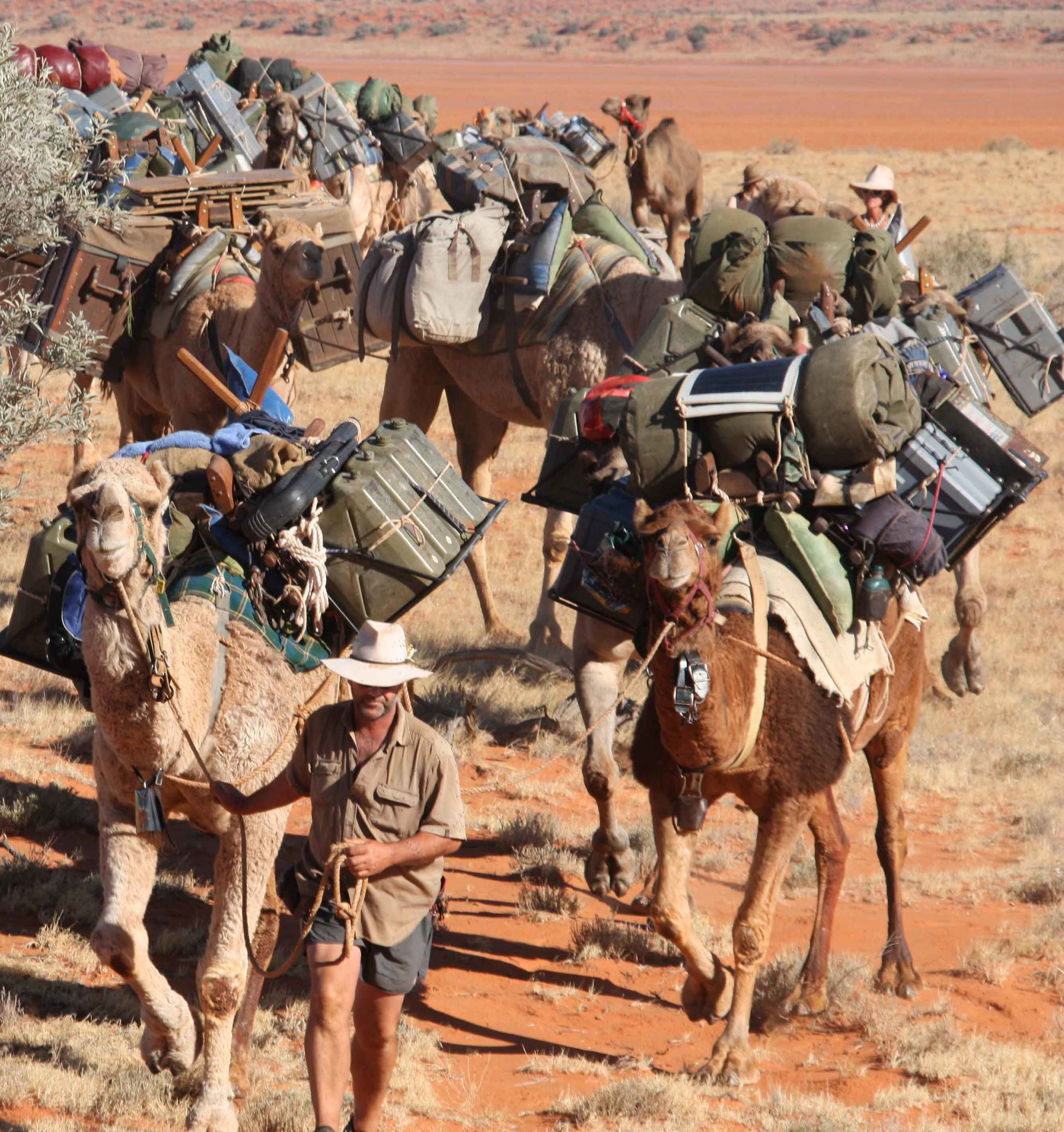 Andrew leads the camel team, 2010.