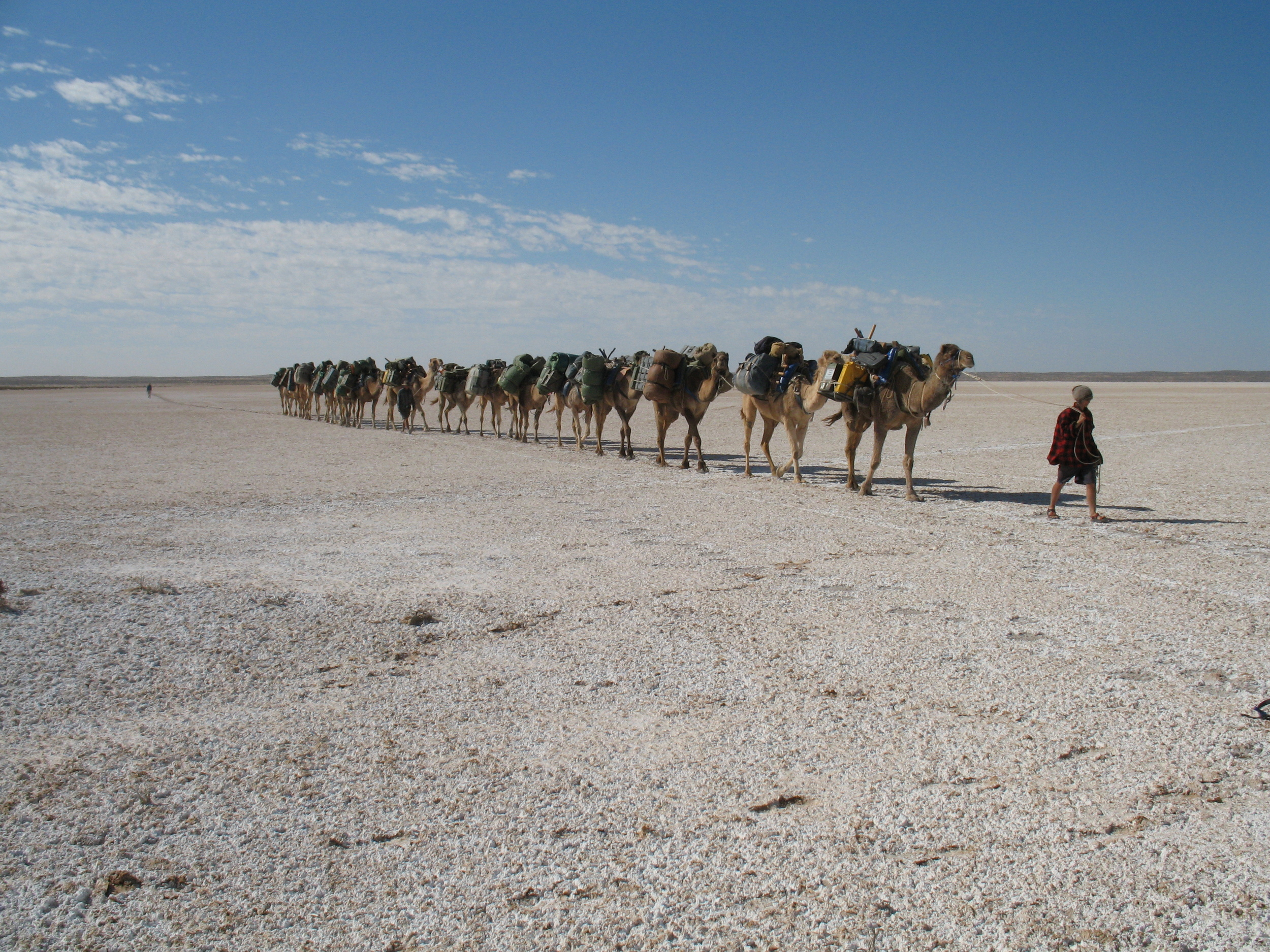 Leading the camels across a small salt lake.
