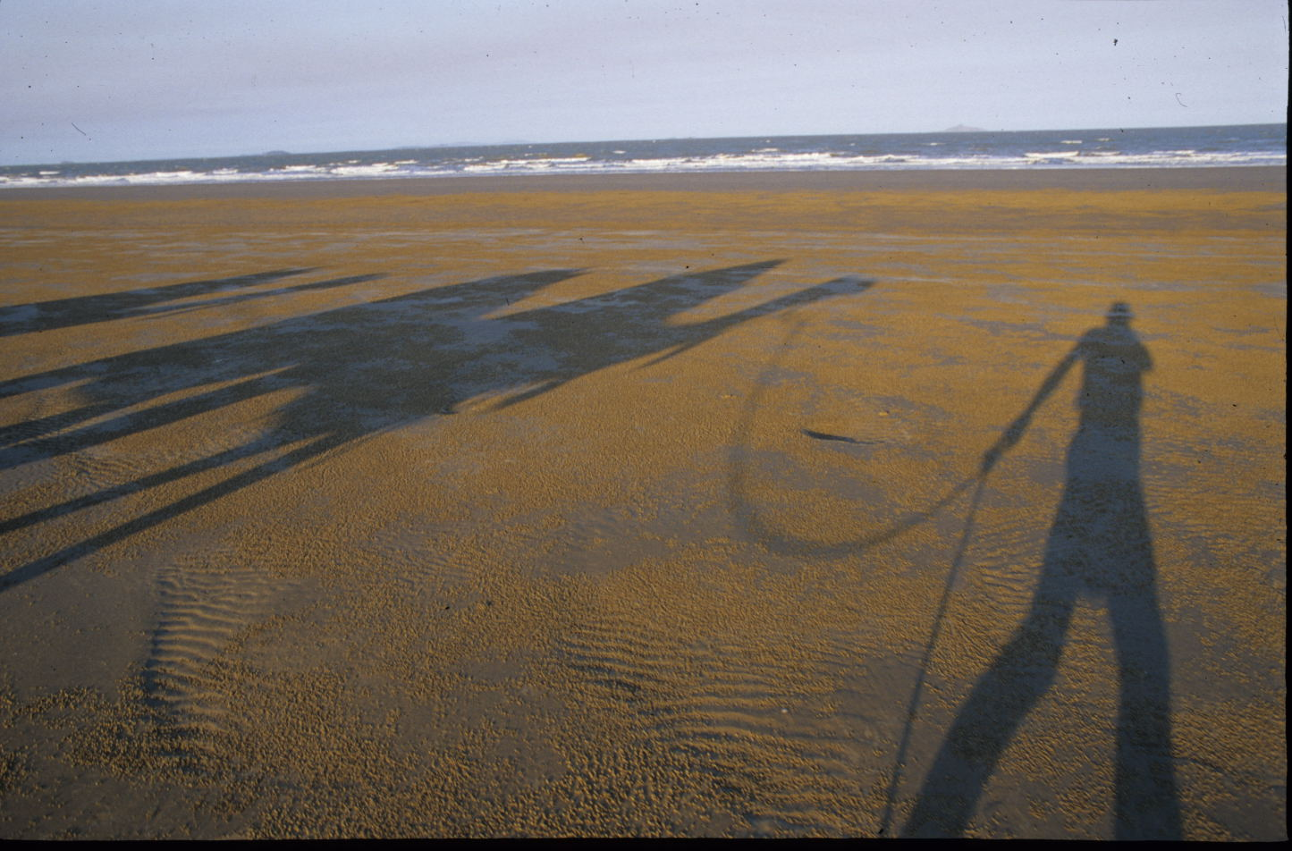 beach - shadows.jpg