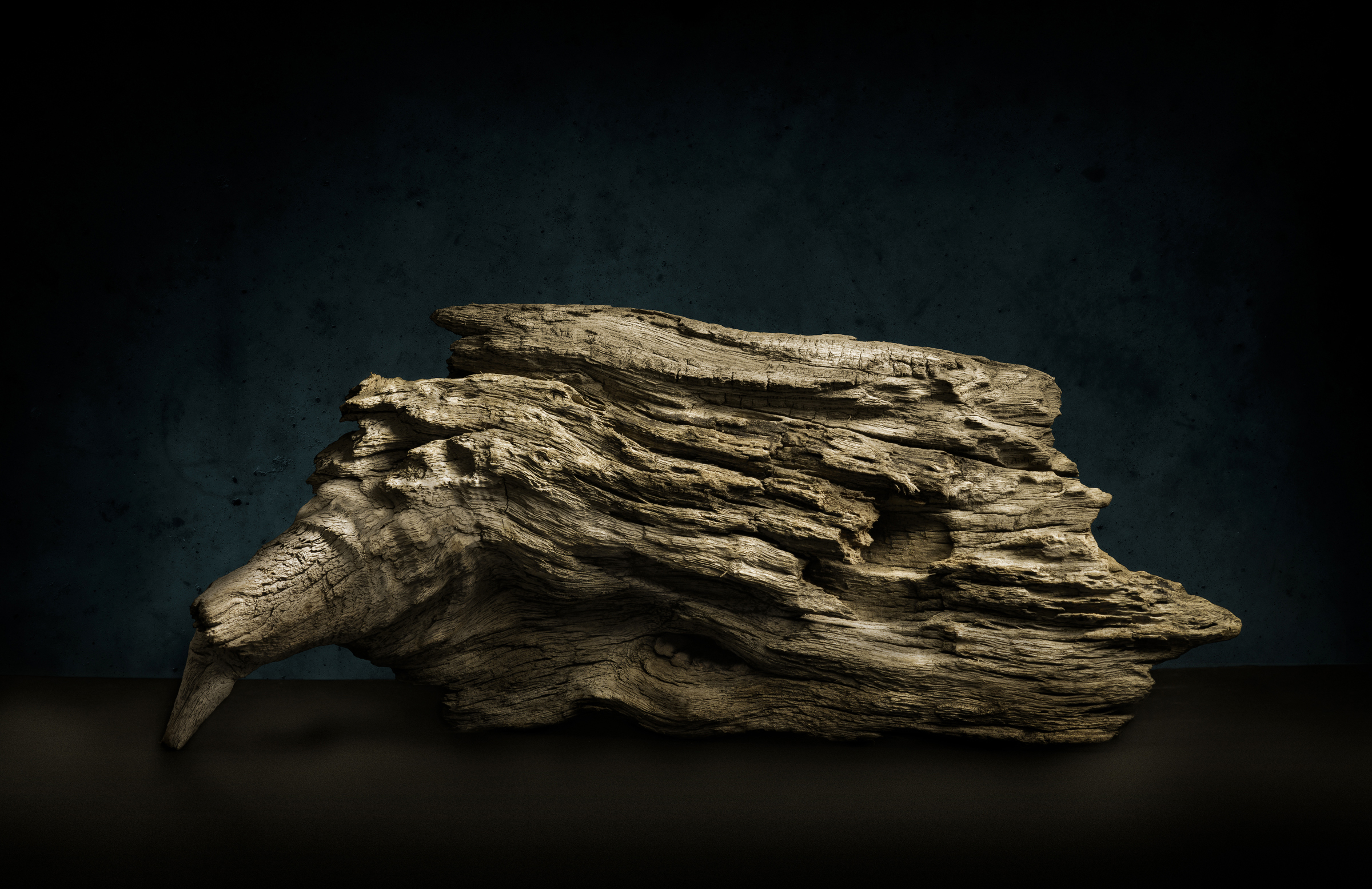 I learned two things on this piece; one is that wood can take on the appearance of many other natural forms (feathers, scales, rock strata, etc.) depending on how one lights it. Then, also, there are endless puns one can make because of this.