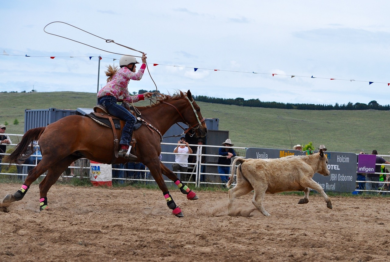 rodeo-1249437_1280.jpg