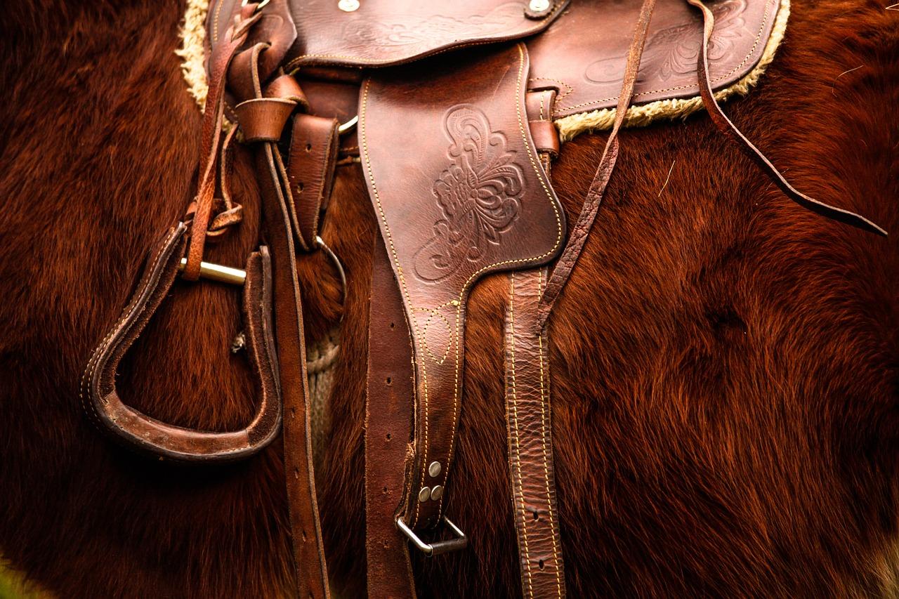 saddle-792822_1280.jpg