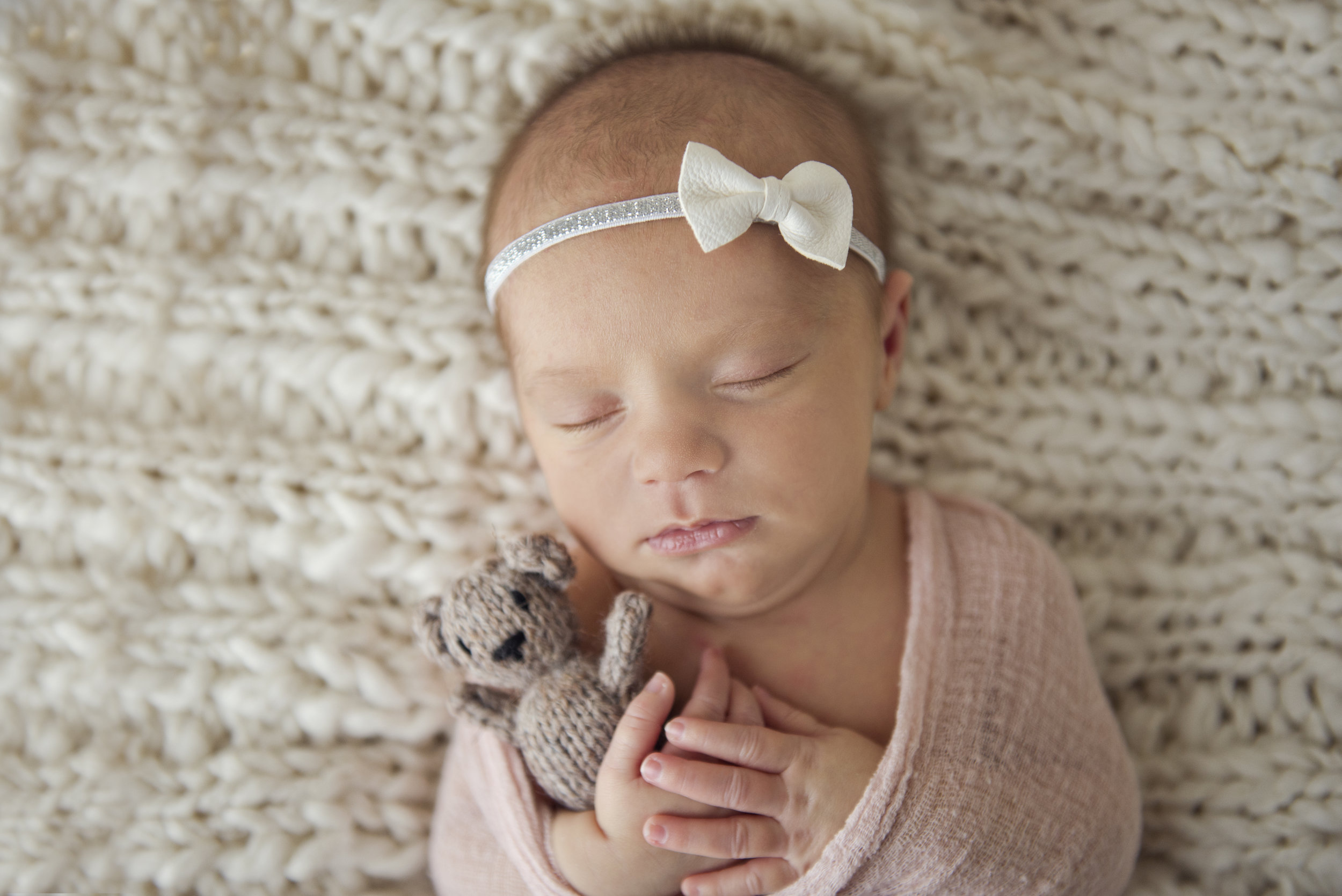 st. louis newborn photography