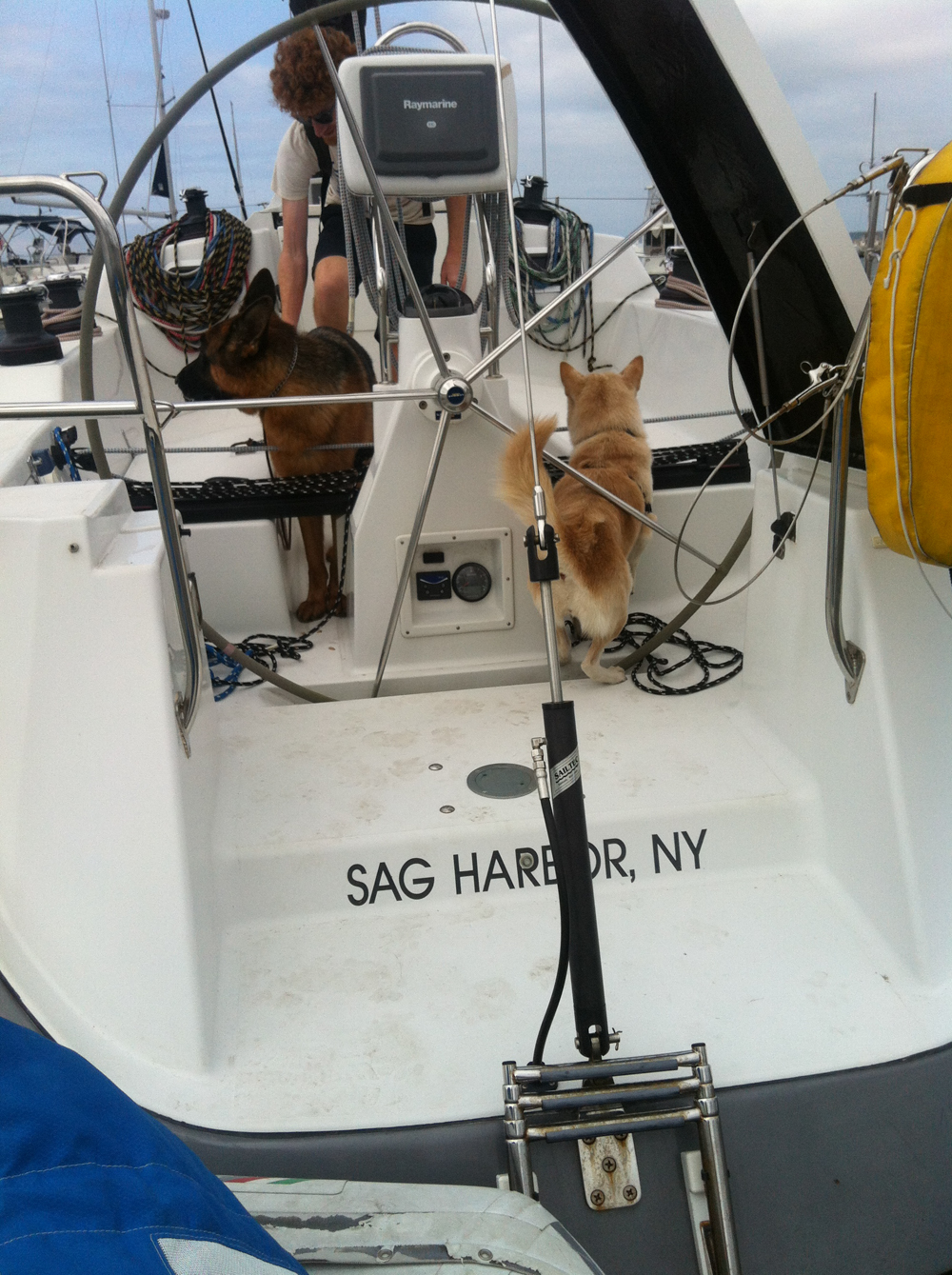 Sag Harbor.