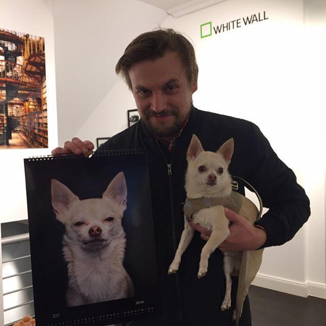 Whitewall Store opening in cologne! Rocco represent!! #whitewall_lab #dogs #dogstagram #dogphotography #hundefotografie #hunde #dogs #dogsandculturecollide