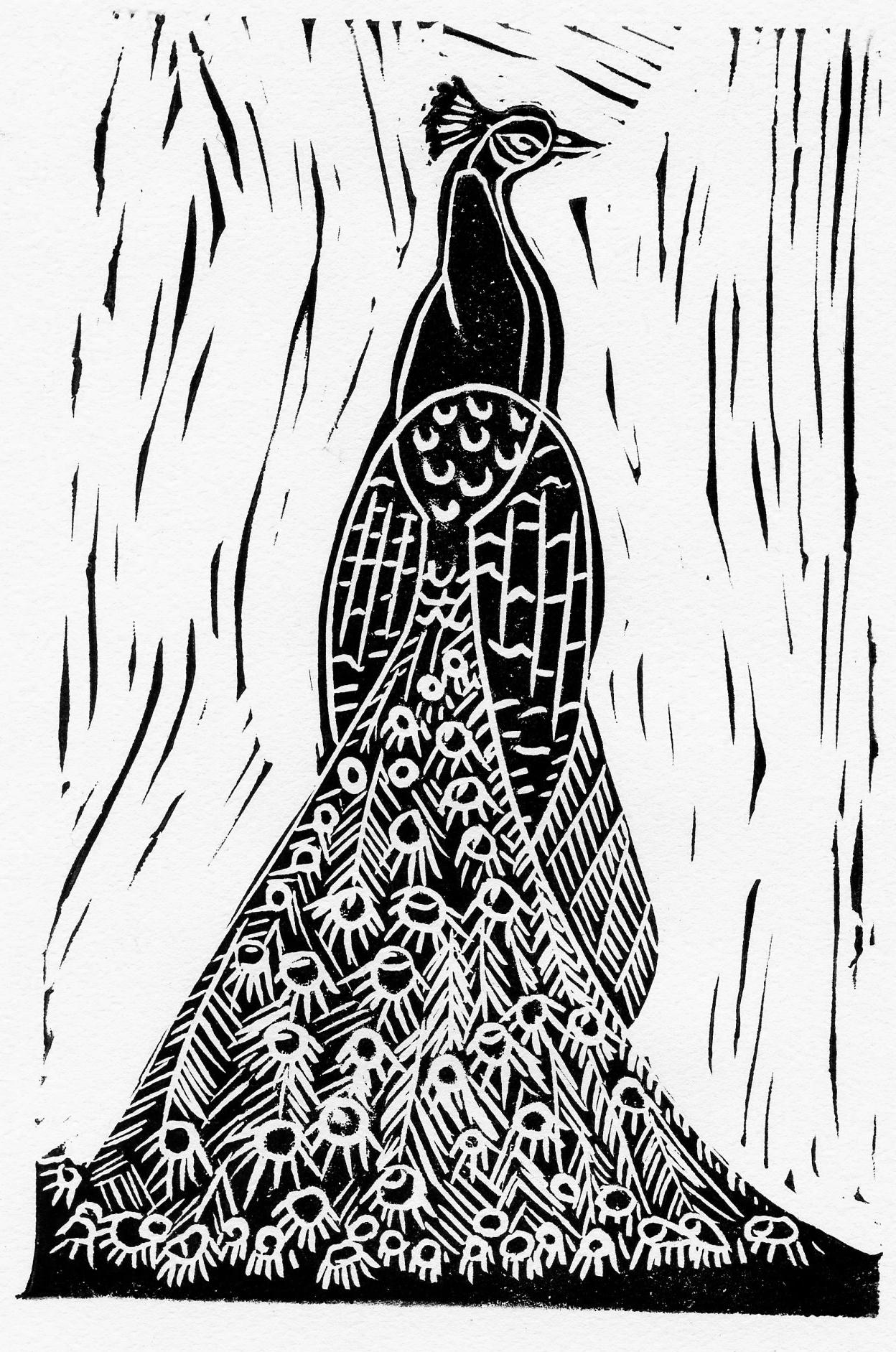 XIV peafowl.jpg