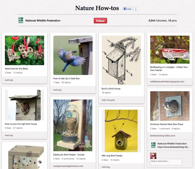 National Wildlife Federation on Pinterest