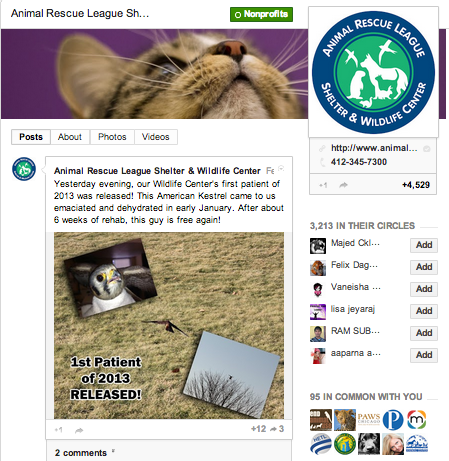 Animal Rescue League and Wildlife Shelter on Google+