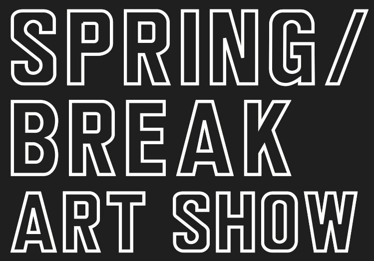 Infinity Pool at SPRING / BREAK Art Fair, NYC -