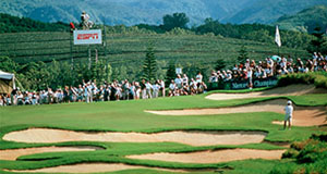 service_golf.jpg