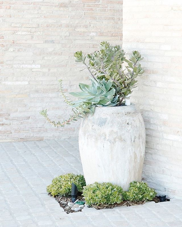 Subtle and serene. I love creating impact with tonal texture. . . . . . Architecture @ericolsendesign  Builder #neillongmanconstruction  #lessismore #texture #exteriordesign #livewithnature #sodomino #rusticplanters #tonaltexture