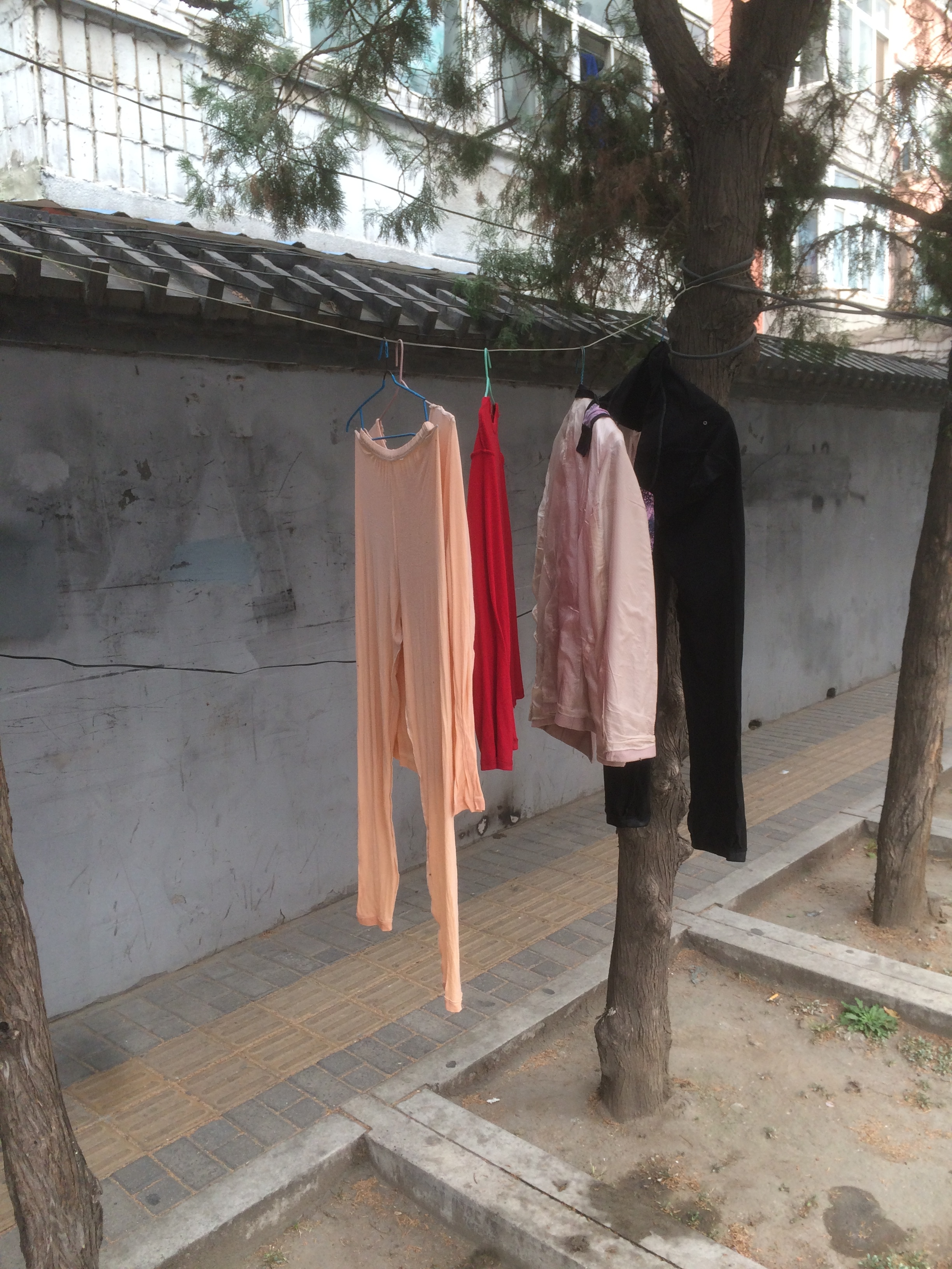 many people don't have dryers in their apartments...so I guess they just dry their clothes on the street?!
