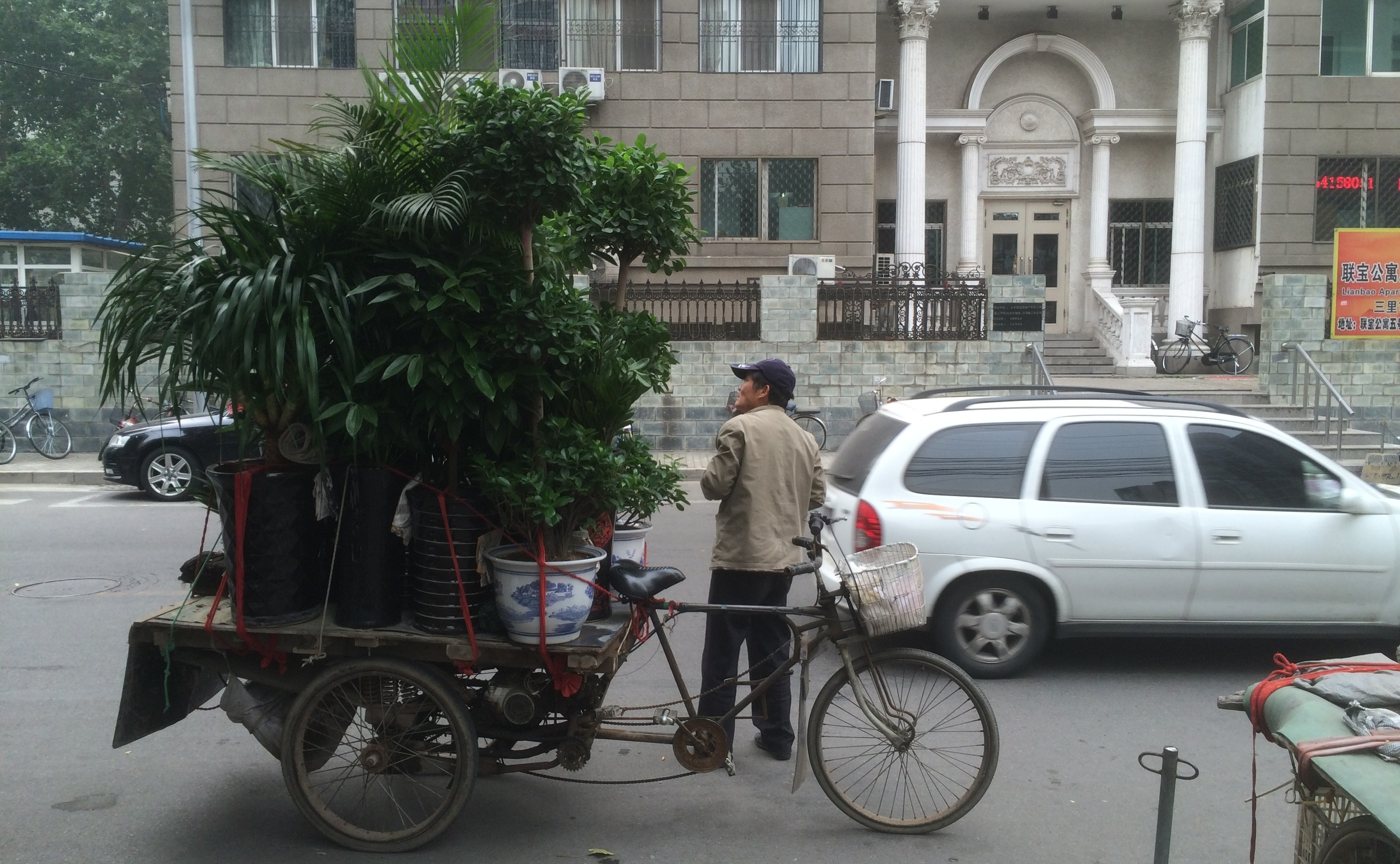 this guy was selling plants...from his bicycle